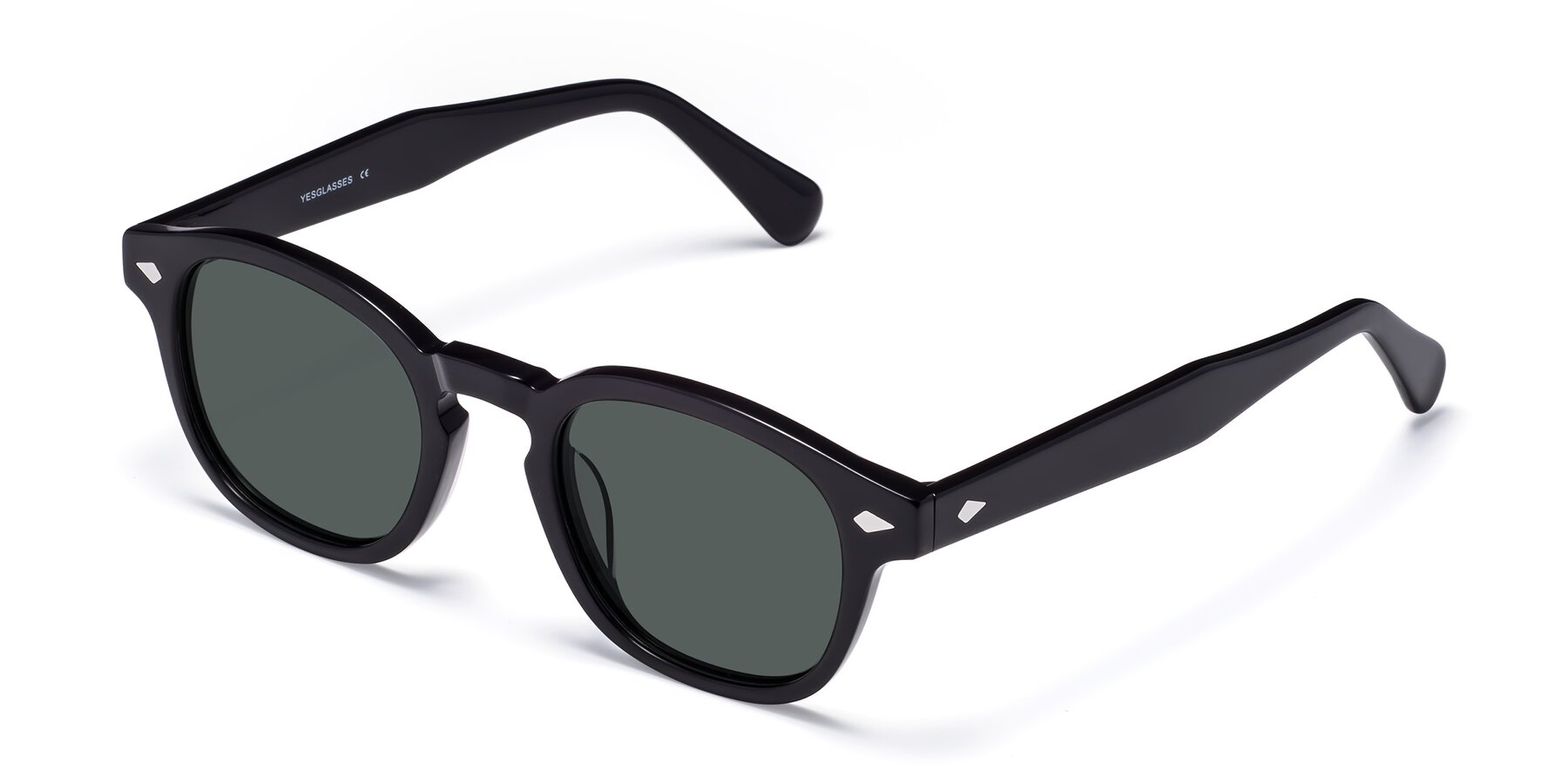 Angle of WALL-E in Black with Gray Polarized Lenses