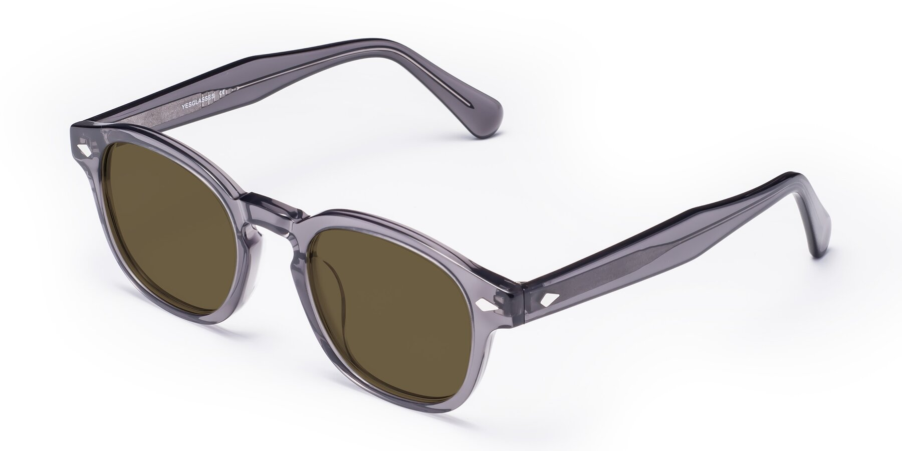 Angle of WALL-E in Translucent Gray with Brown Polarized Lenses