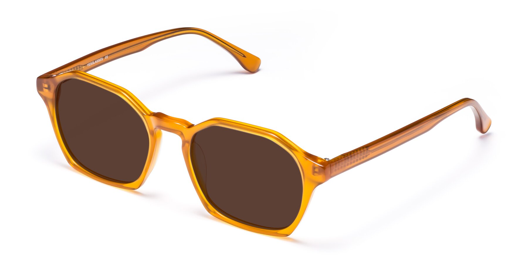 Angle of Stoltz in Brown with Brown Tinted Lenses