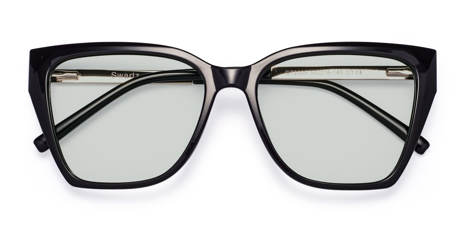 Folded Front of Swartz in Black with Light Green Tinted Lenses