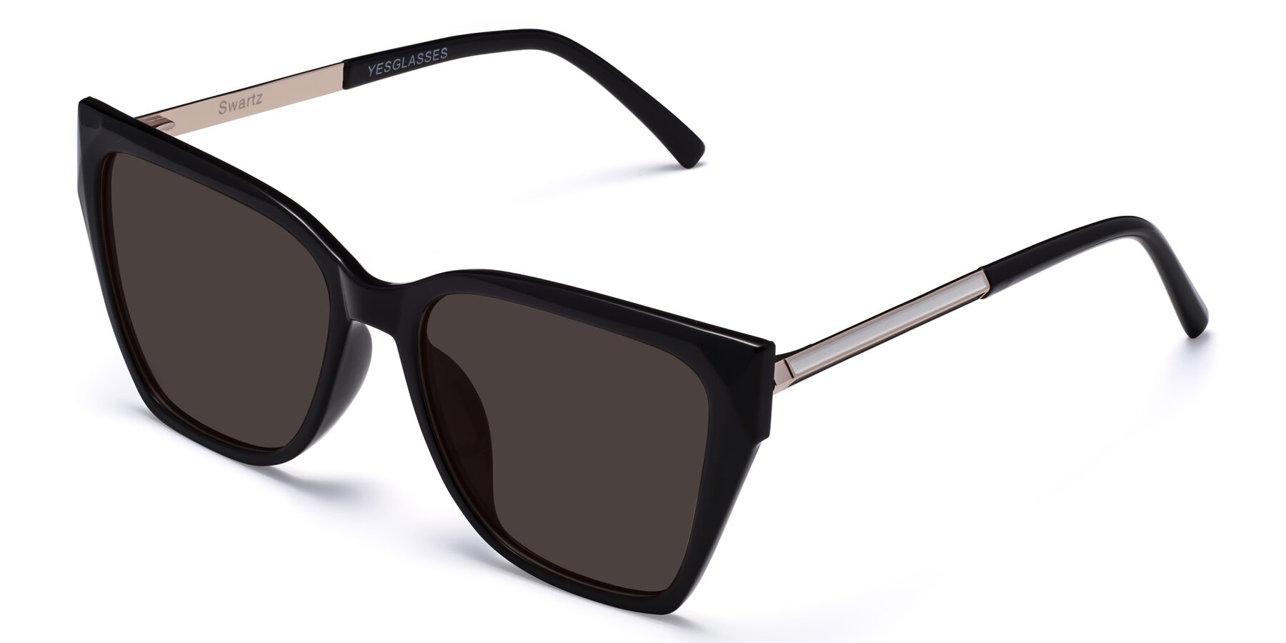 Angle of Swartz in Black with Gray Tinted Lenses