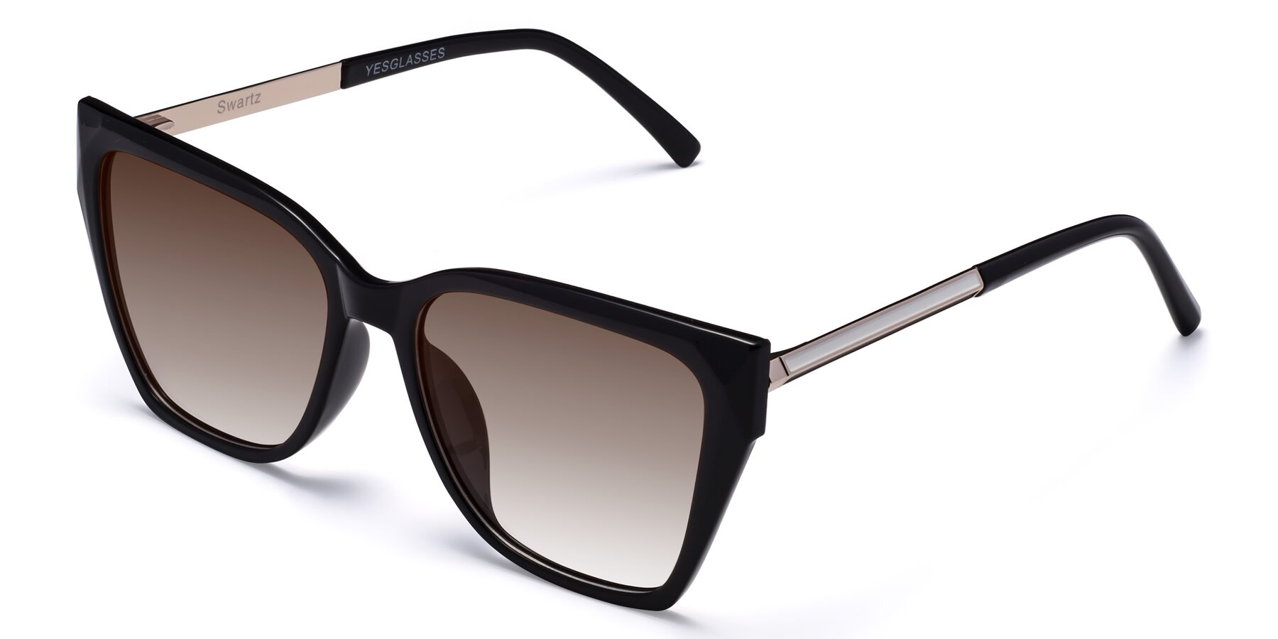 Angle of Swartz in Black with Brown Gradient Lenses