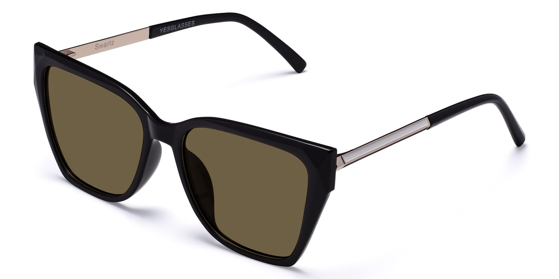 Angle of Swartz in Black with Brown Polarized Lenses