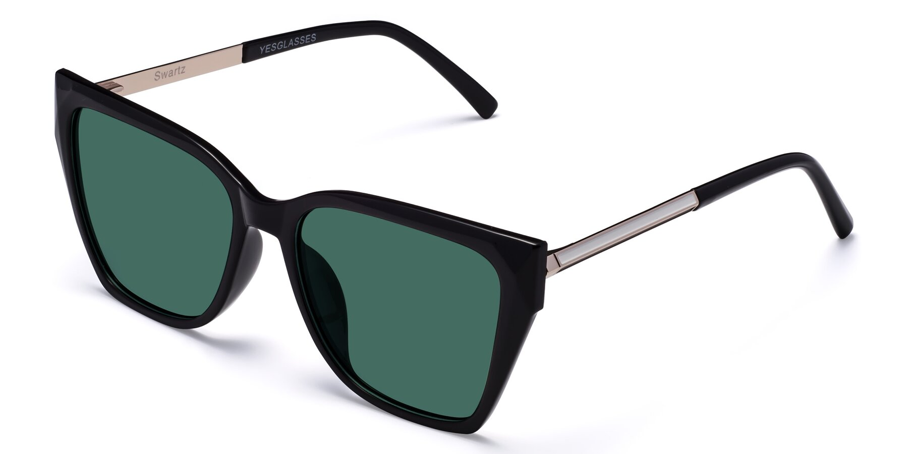 Angle of Swartz in Black with Green Polarized Lenses