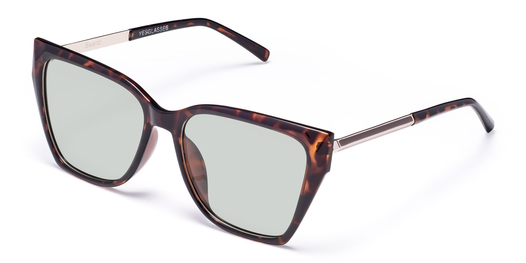 Angle of Swartz in Tortoise with Light Green Tinted Lenses