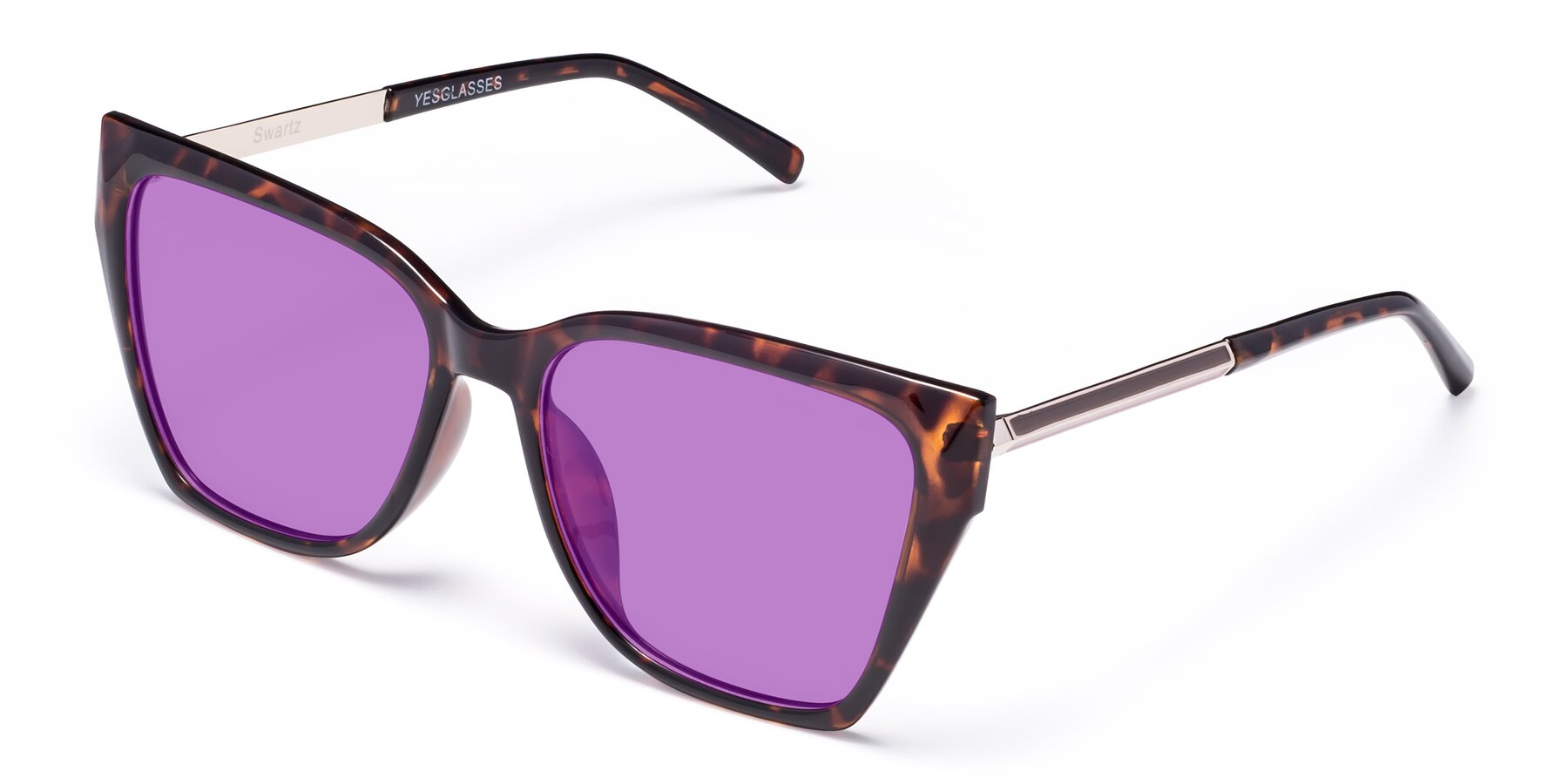 Angle of Swartz in Tortoise with Medium Purple Tinted Lenses