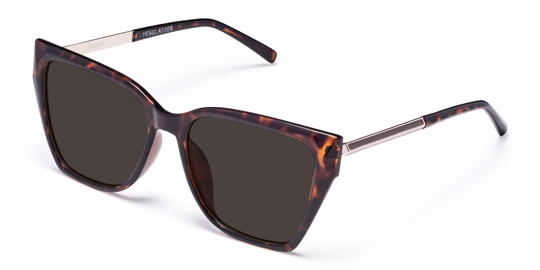 Angle of Swartz in Tortoise with Gray Tinted Lenses