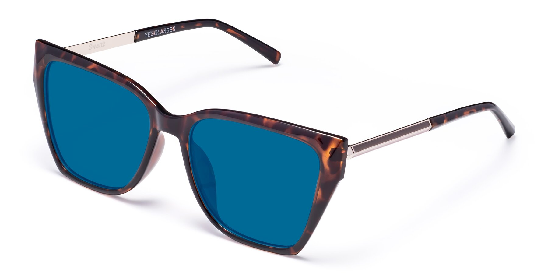 Angle of Swartz in Tortoise with Blue Tinted Lenses
