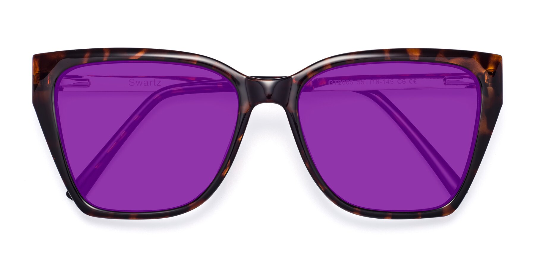 Folded Front of Swartz in Tortoise with Purple Tinted Lenses
