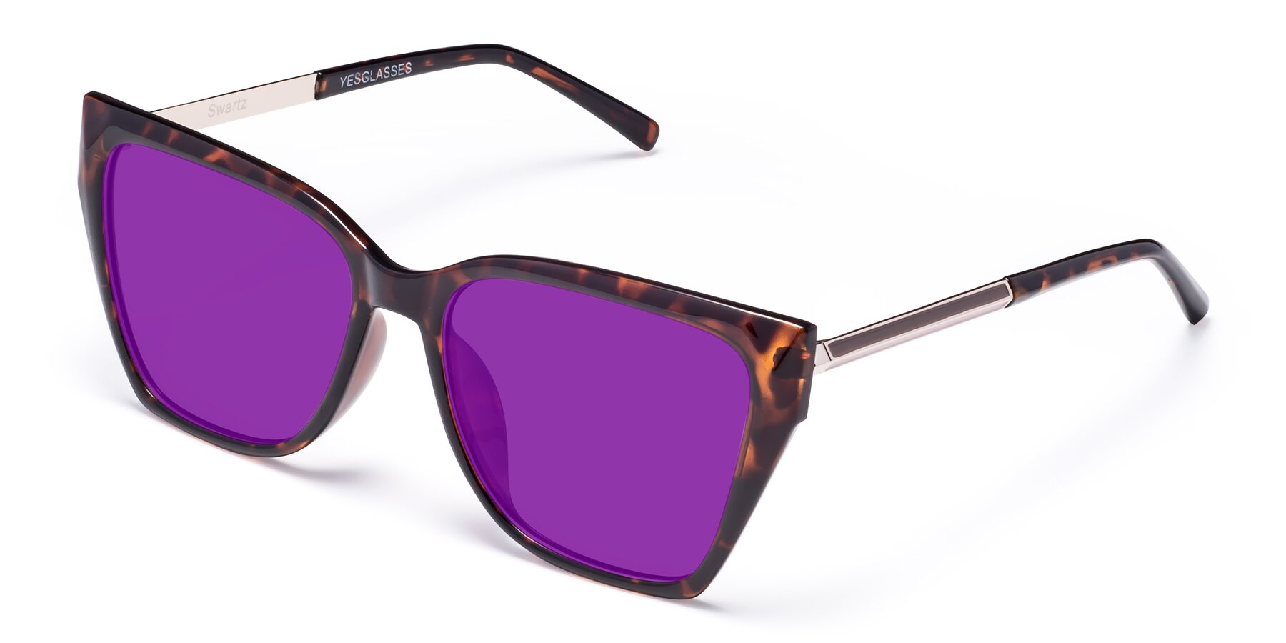 Angle of Swartz in Tortoise with Purple Tinted Lenses