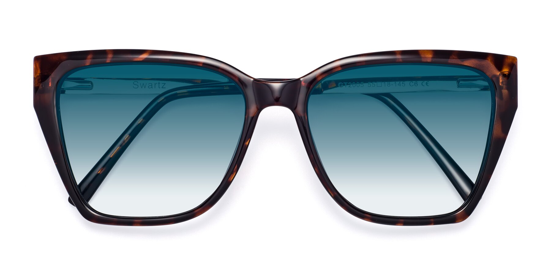 Folded Front of Swartz in Tortoise with Blue Gradient Lenses