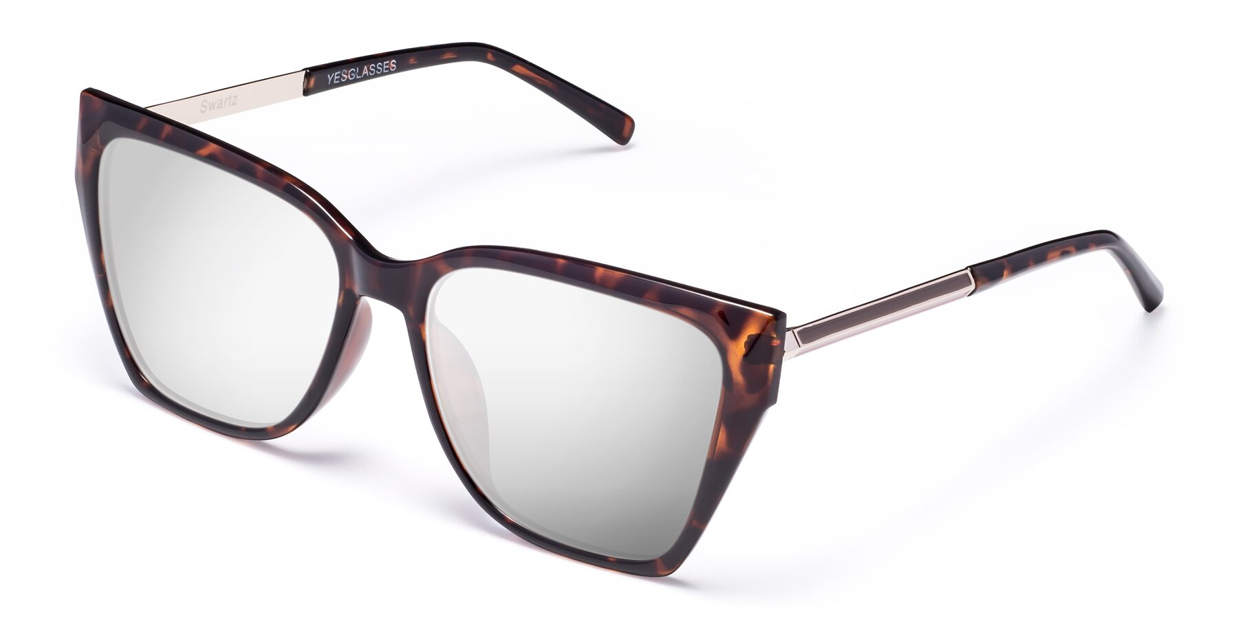 Angle of Swartz in Tortoise with Silver Mirrored Lenses