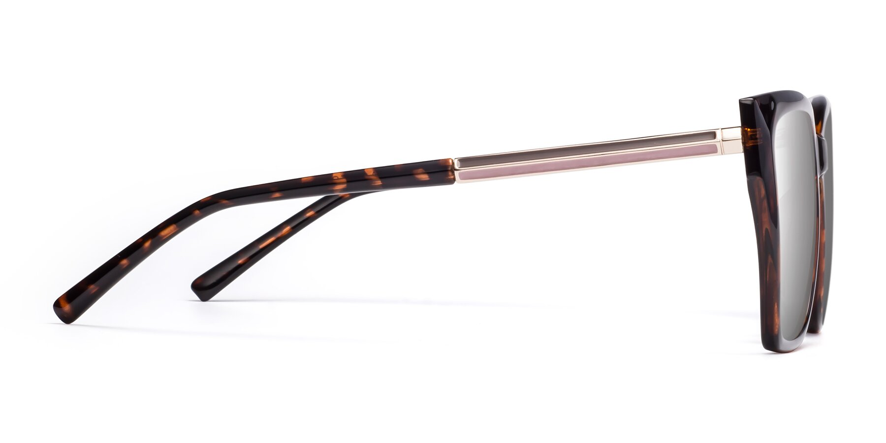 Side of Swartz in Tortoise with Silver Mirrored Lenses