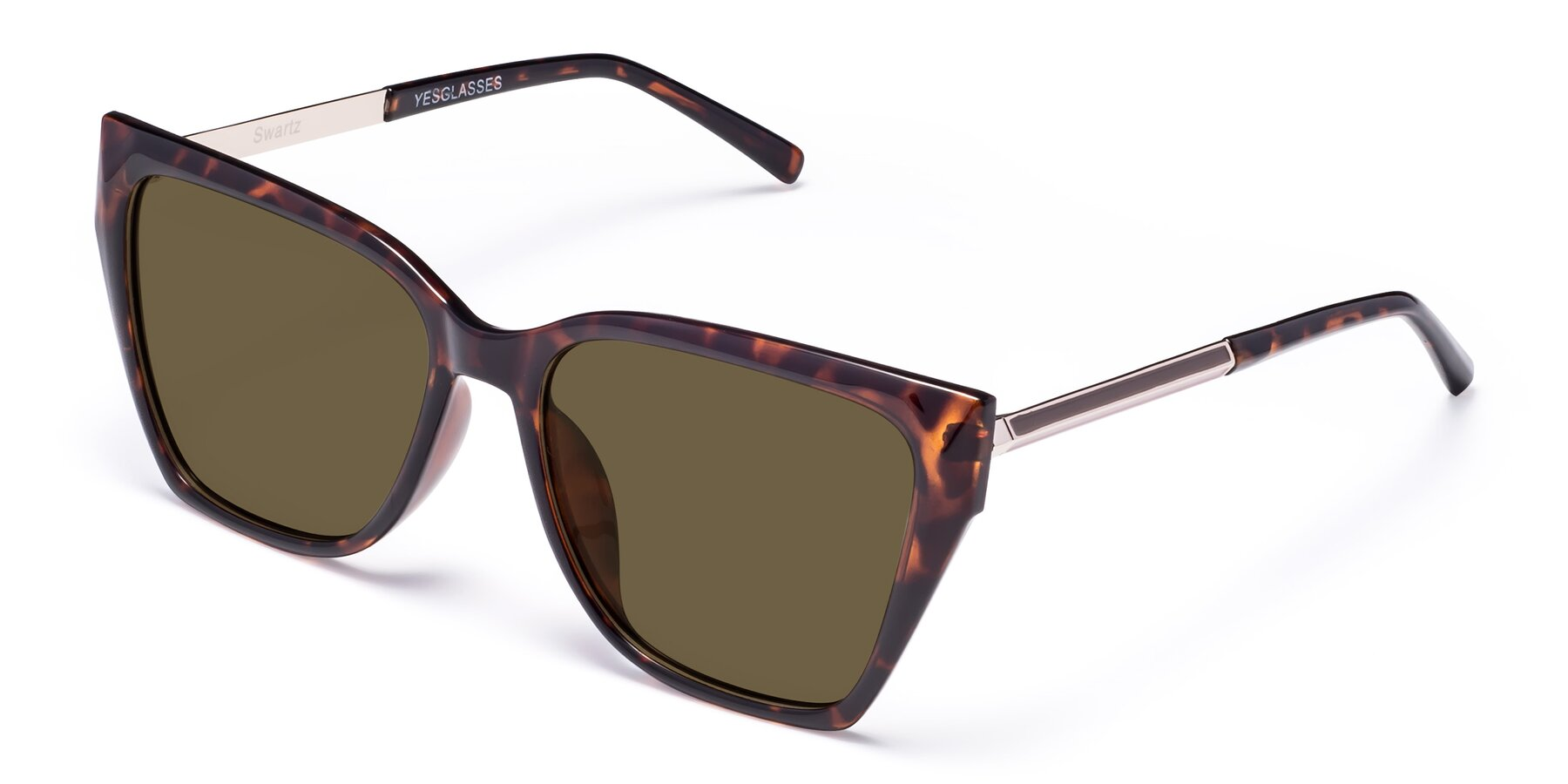 Angle of Swartz in Tortoise with Brown Polarized Lenses