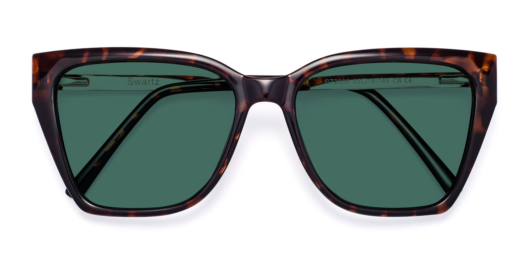Folded Front of Swartz in Tortoise with Green Polarized Lenses