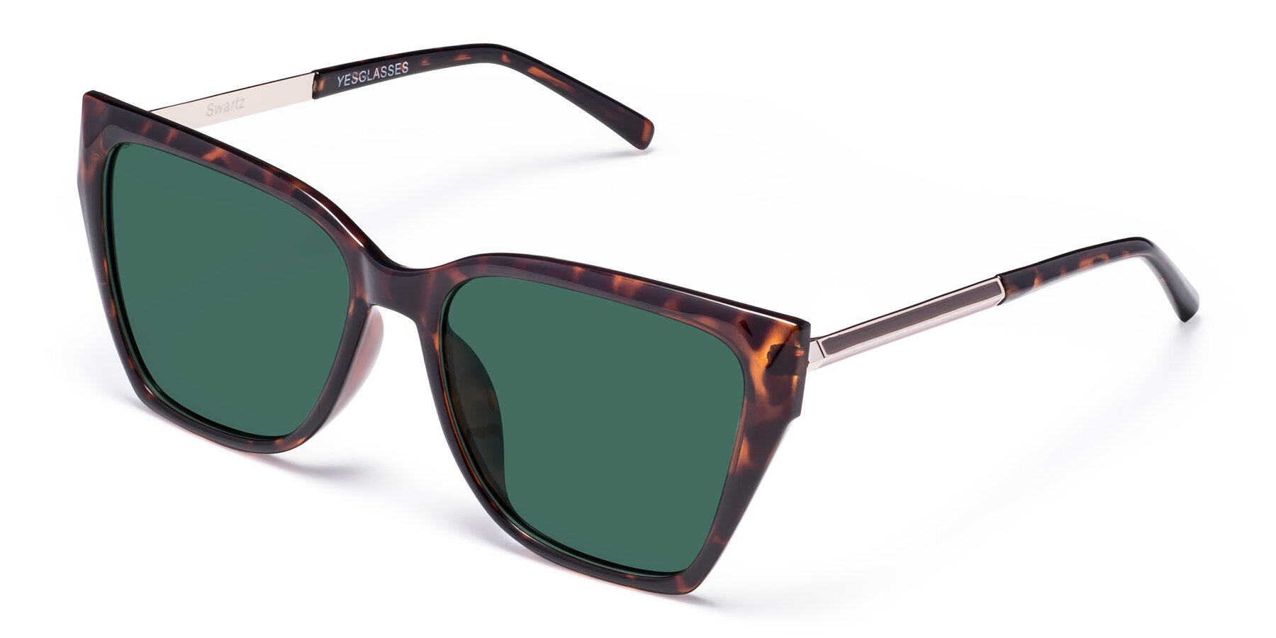 Angle of Swartz in Tortoise with Green Polarized Lenses