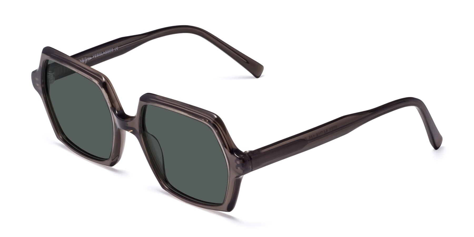 Angle of Melanie in Transparent Gray with Gray Polarized Lenses