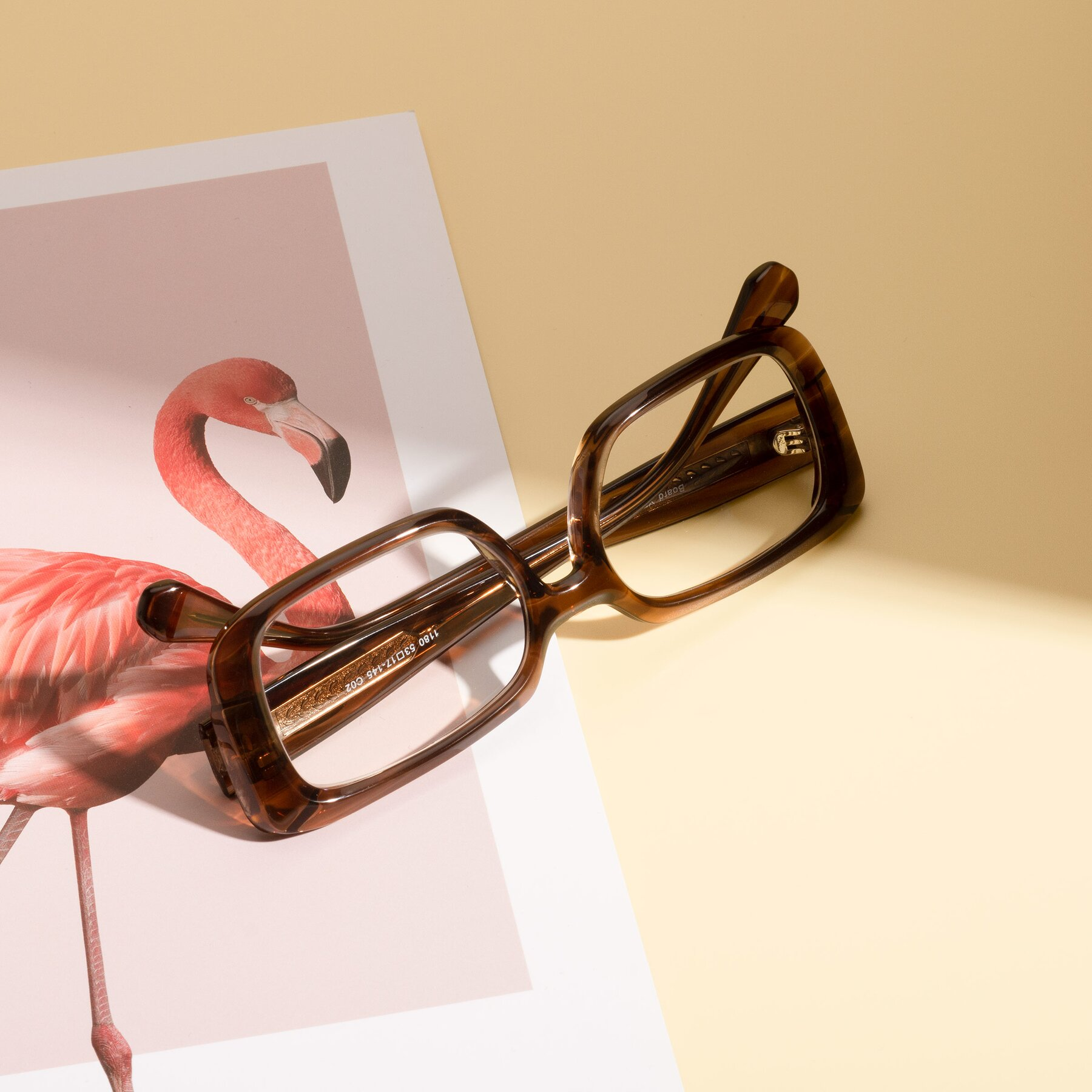 Lifestyle photography #1 of Board in Coffee with Clear Eyeglass Lenses