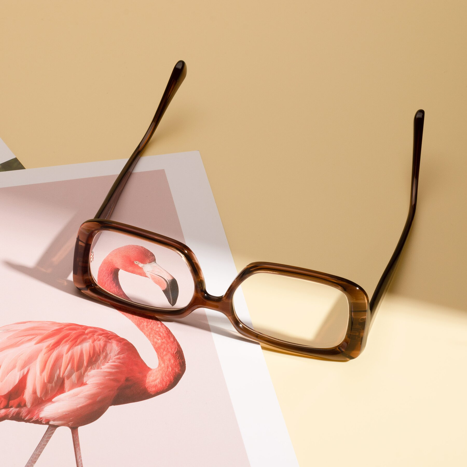 Lifestyle photography #2 of Board in Coffee with Clear Eyeglass Lenses