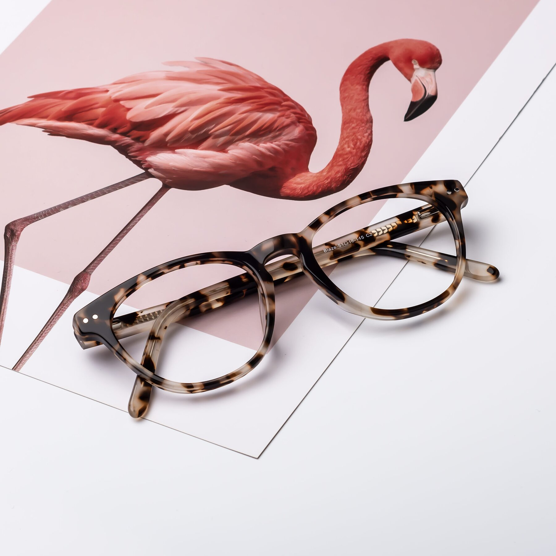Lifestyle photography #1 of Blaze in Tortoise with Clear Eyeglass Lenses